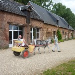 Visite-ferme-76-ferme-pedagogique-la-ferme-au-fil-des-saisons-Visite-groupes