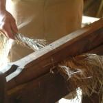 Visite ferme 76- Ferme pedagogique - La ferme au fil des saisons - Lin-outils