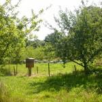 Visite ferme 76- Ferme pedagogique - La ferme au fil des saisons - Sentier nature