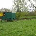 Visite-ferme-76-ferme-pedagogique- La ferme au fil des saisons - Sentier Nature 6