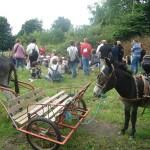 Visite ferme 76- Ferme pedagogique - La ferme au fil des saisons - Visites groupes